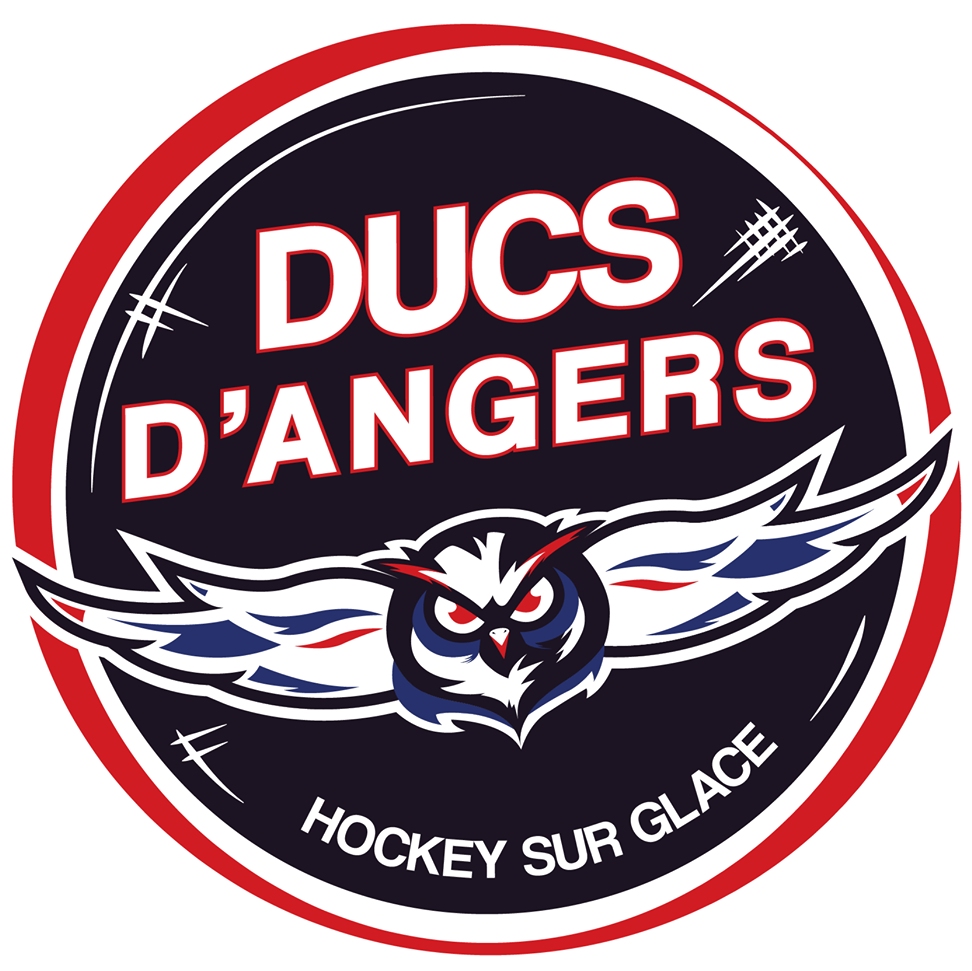 Programme TV Ducs Angers